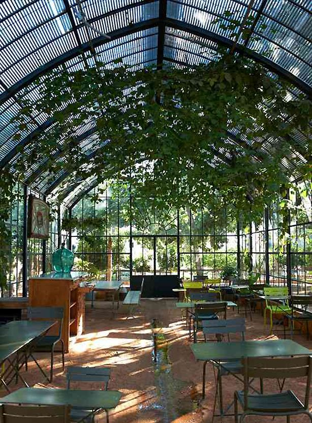 Inside the #greenhouse at #Babylonstoren outside #Capetown, South Africa.