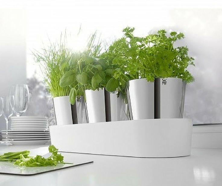 Ελληνική κουζίνα σημαίνει ελαιόλαδο και φρέσκα μυρωδικά. Σετ γλαστράκια 3 τεμαχίων με σύστημα ποτίσματος, WMF. Περισσότερα στο http://www.parousiasi.gr/?product=wmf-σετ-3-τεμ-γλαστρακια-με-σ-0641306040