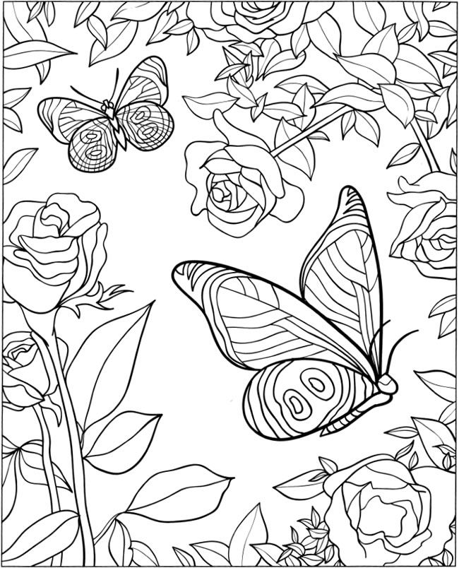 3-D Coloring Book - Butterfly Designs Welcome to Dover Publications
