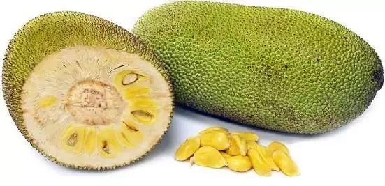 jackfruit- Quora