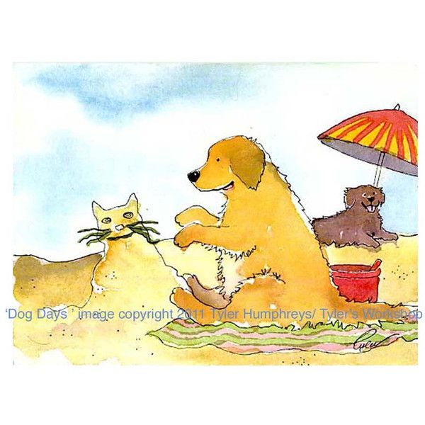 Grappige Golden Retriever op strand wenskaart, grappig strand honden Card, Golden Retriever hond illustratie, hond Cartoon kaart ($4.59) found on Polyvore