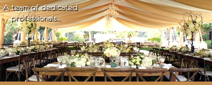 48 Best Chair Hire From Pollen4hire Images On Pinterest: 48 Best Images About Wedding Tent Lighting Ideas On