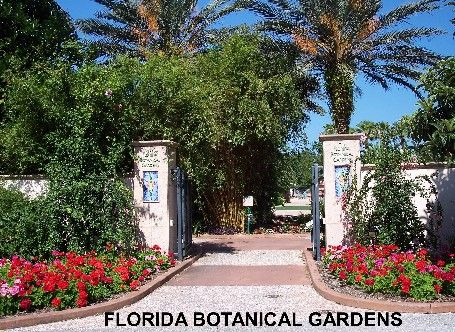 14 Best Florida State Parks Campgrounds And Such Images On Pinterest Florida Places To