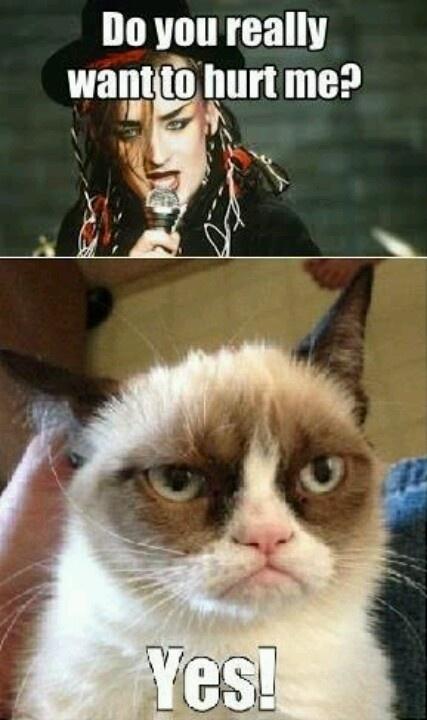 Tardar Sauce Amp Boy George Grumpycat Meme Grumpy Cat