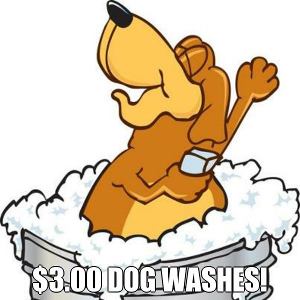 WAHOOOOOO!!!! We did it!! 3,000 Facebook fans!! That means $3.00 dog washes from NOW until Friday (2/22/13) at 5:30 pm!! That is THREE DAYS of $3.00 dog washes!!