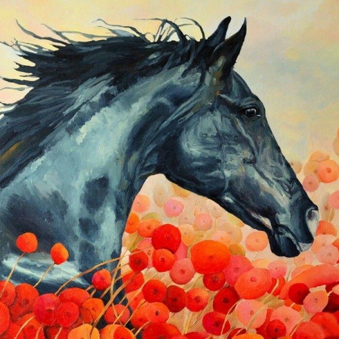Horse & poppies