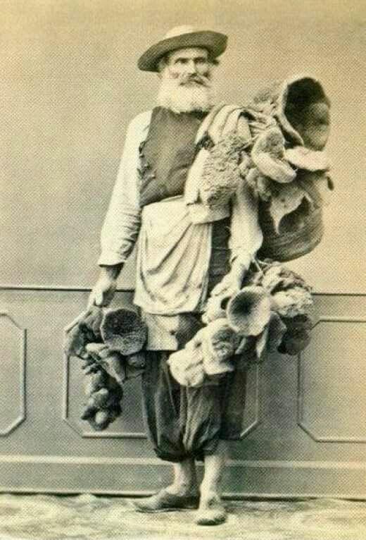 Izmirde sungerci 1860