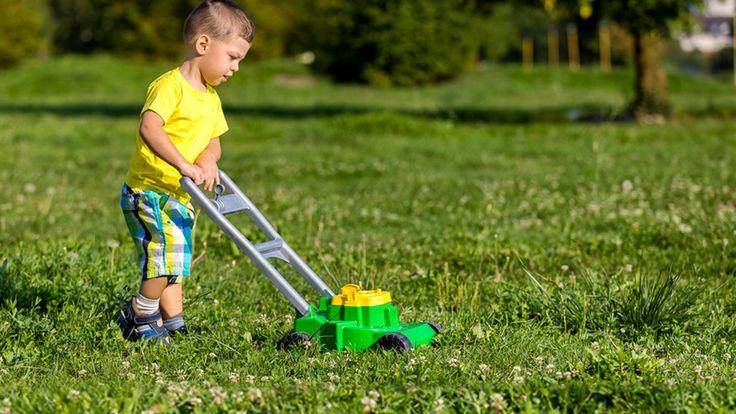 News – Tipp:  ift.tt/2MTCPoE Rasen abends mähen – Was ist bei Hitze oder Nässe… – Finanzieller Freiraum
