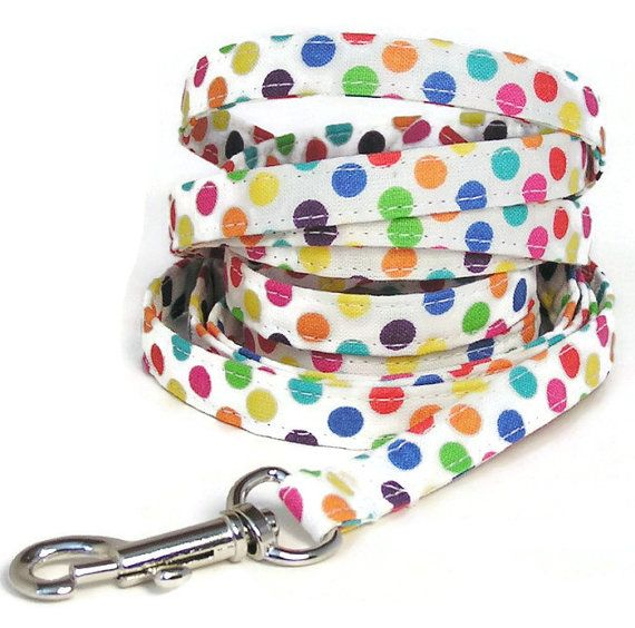 XS Leash  Rainbow Dots  3/8 wide 4 or 6 feet Extra by PawsnTails