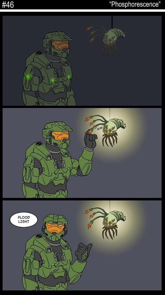 Halo Flood Meme 1000+ images about halo on pinterest jokes, fallout ...