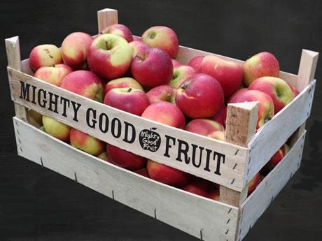 APPELS - De vezels zorgen voor een goede stofwisseling en voorkomen een aantal soorten kanker - bevatten pectine, wat een zuiverende werking heeft en ervoor zorgt dat zware metalen uit je lichaam worden gehaald - kunnen astma voorkomen. Door appels te eten tijdens de zwangerschap en jonge kinderen appels te geven, is de kans op astma veel kleiner. Appels bevatten veel vitamine C en antioxidanten. Vooral als je ook de schil opeet help je je immuunsysteem om optimaal te functioneren.