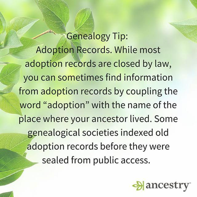 Adoption tips                                                                                                                                                      More