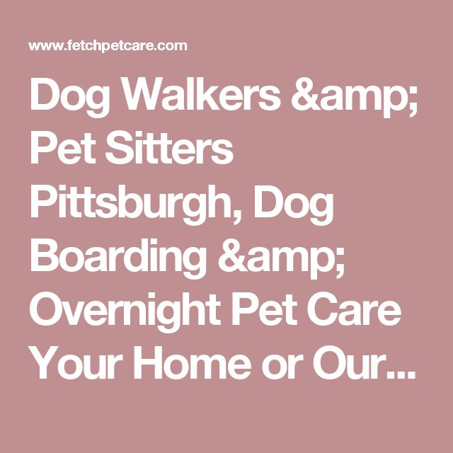 Dog Walkers & Pet Sitters Pittsburgh, Dog Boarding & Overnight Pet Care Your Home or Ours - Fetch! Pet Care