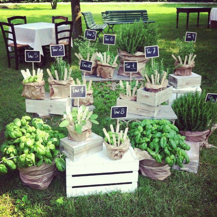 Tableau mariage con piante aromatiche