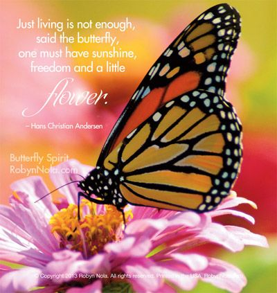 Butterfly spirit beautiful butterfly photography and inspirational quotes not enough - Flowers that mean freedom ...