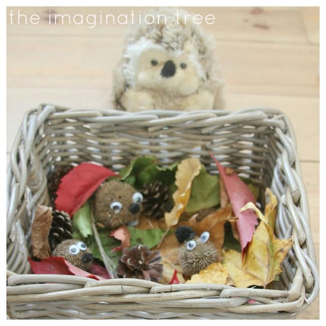 Create an exploration basket with natural treasures to find out about Autumn, hibernation and hedgehogs!  Hedgehog Hibernation Exploration Basket
