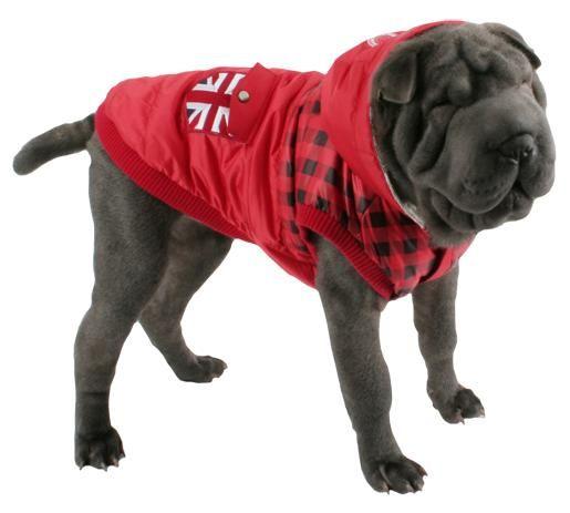 ropa para perros grandes un estilo diferente