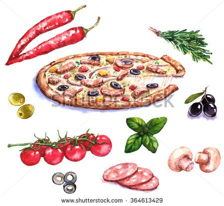 Hand-drawn watercolor illustration of the pizza and different ingredients: olives, basil, mushrooms, pepper, tomato.  Food drawing isolated on the white background