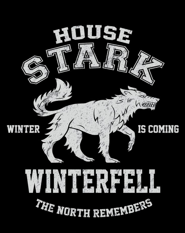 WINTER IS COMING T-Shirt $12 Game of Thrones tee at Once Upon a Tee!
