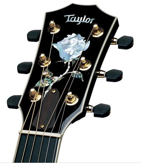 Rose Headstock Inlay | Taylor Guitars