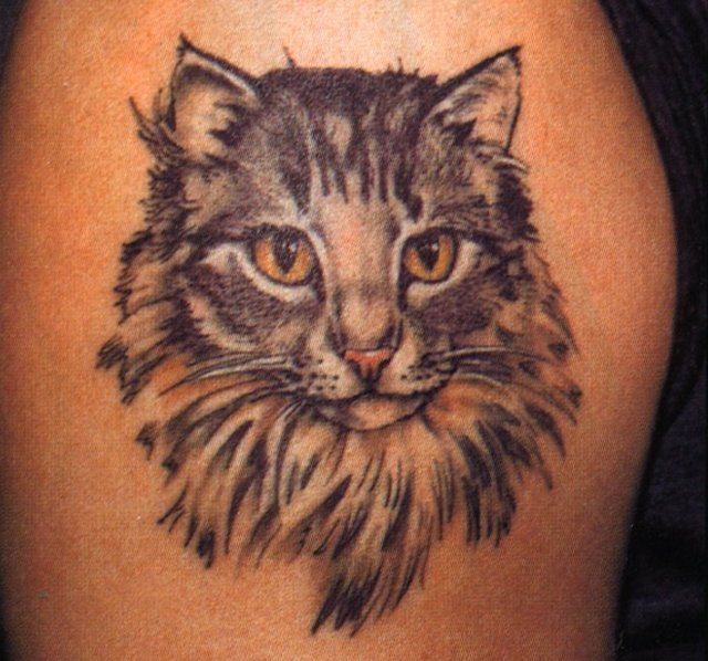 31 best tattoos images on pinterest cat tat kitty for Bad cat tattoo