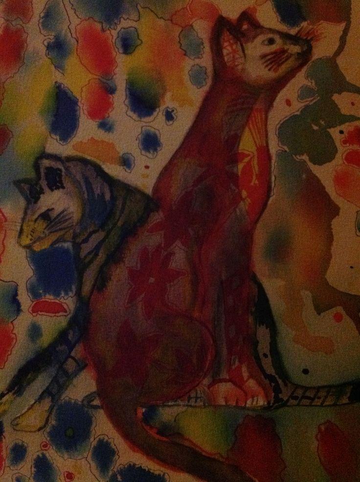 Kleurige katten