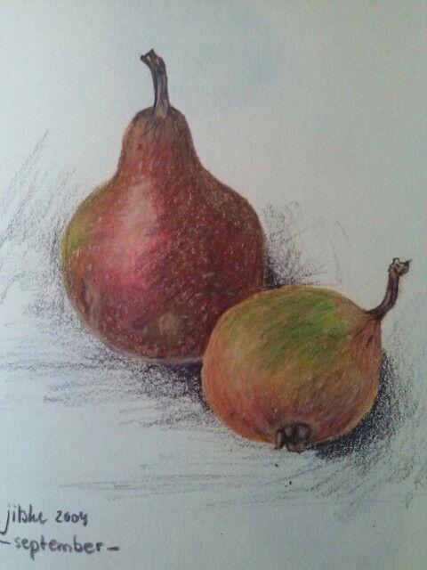 Pears- colour pencil illustration- by Jitske Jacobs
