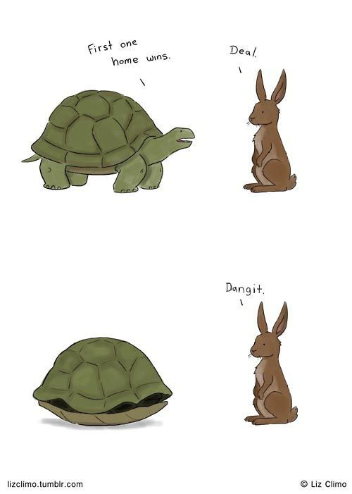 Smart turtle; dumb bunny.Silly Rabbit, Too Funny, Tortoise Awesome, So Funny