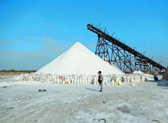 Si bien tenemos reservas importantes para explotación, así como las posibilidades infinitas del mar para extraer sal, ¿por qué p