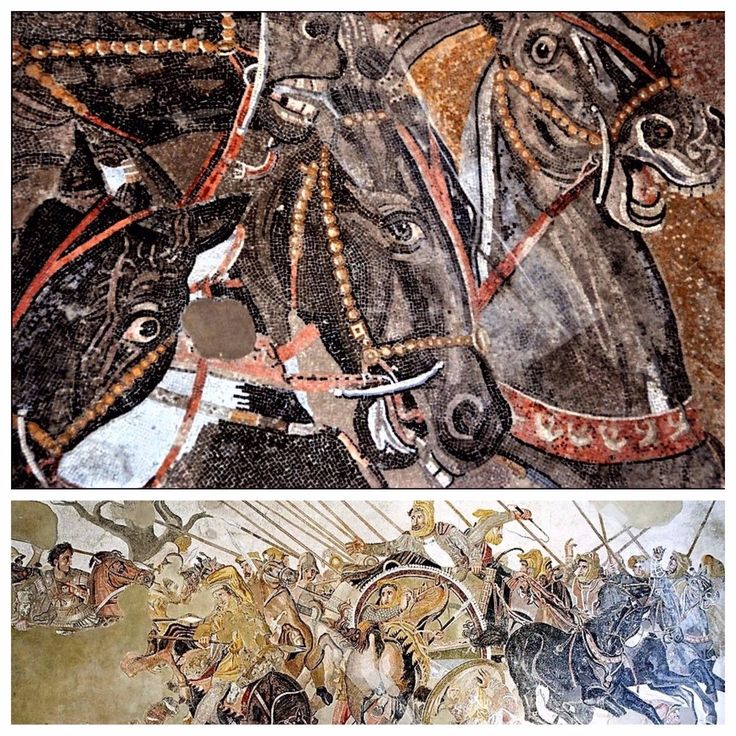 The famous 'Alexander Mosaic' (Il mosaico di Alessandro) and a close-up of the amazing detail that focuses on the horses of Darius III's chariot (bottom right quadrant).  #Macedonia #AncientGreece #MilitaryHistory #Warfare #Classics