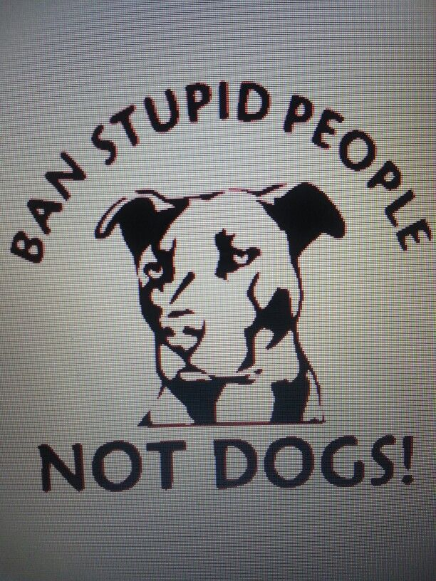 "Pit Bull Love ""Ban Stupid People - NOT DOGS!"""