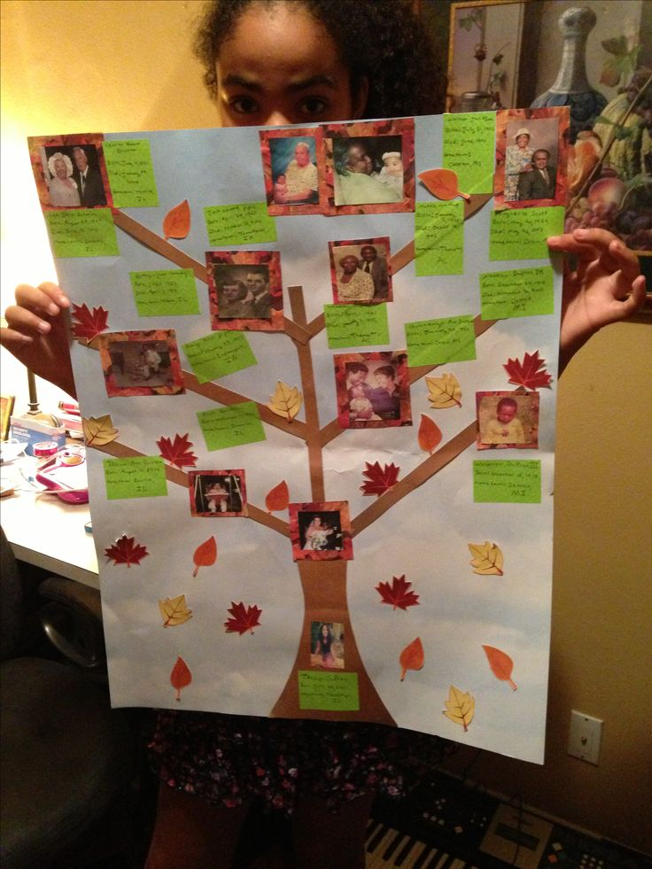 Family tree school project 7th grade social studies poster board and scrapbook paper  A+work!!