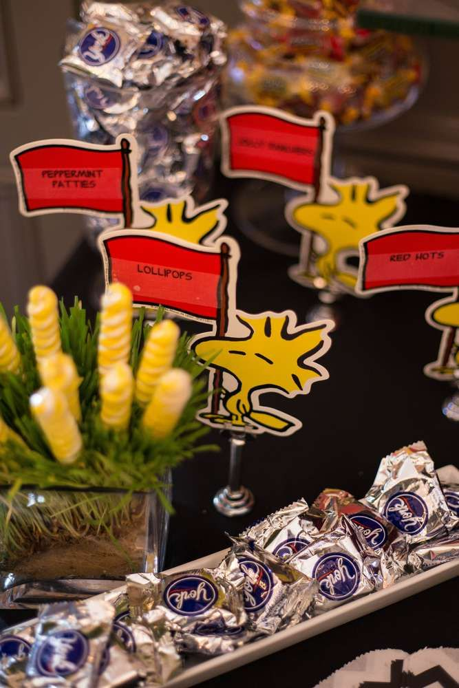 Snoopy & Peanuts Birthday Party Ideas | Photo 1 of 44 | Catch My Party