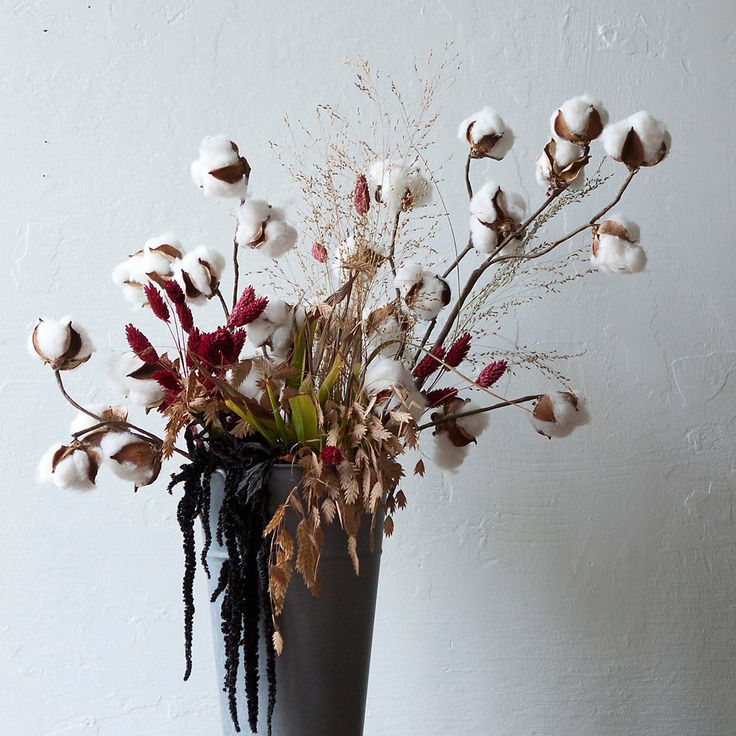 Dried Cotton Stem in Garden Wreaths + Bunches at Terrain