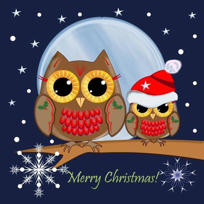°‿✿⁀ Holiday Critters ‿✿⁀°