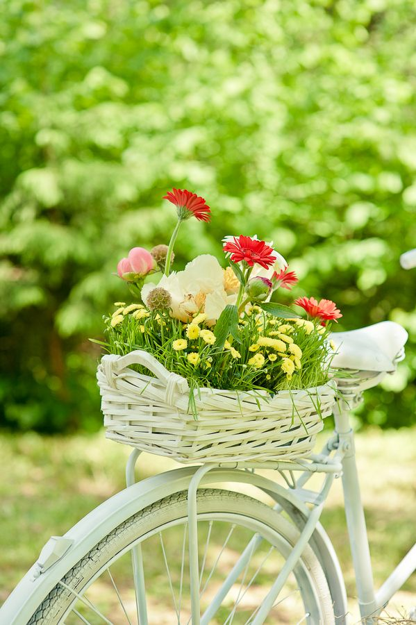 Summer flower basket on an old bicycle...so fresh and pretty!  Would love to do this!