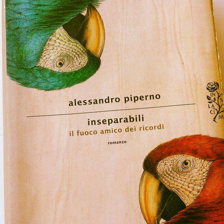 Inseparabili,  Alessandro Piperno agosto 2014 ☆☆☆