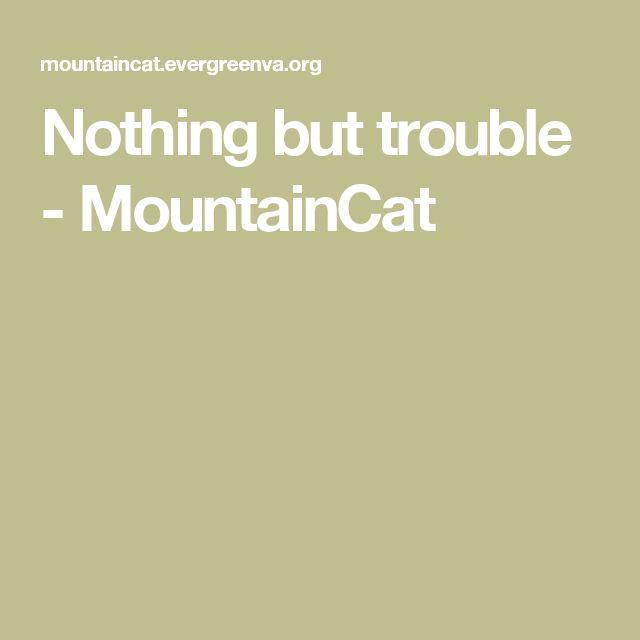 Nothing but trouble  - MountainCat