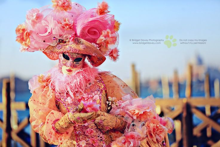 Venice Carnival 2015 - Lady in Pink