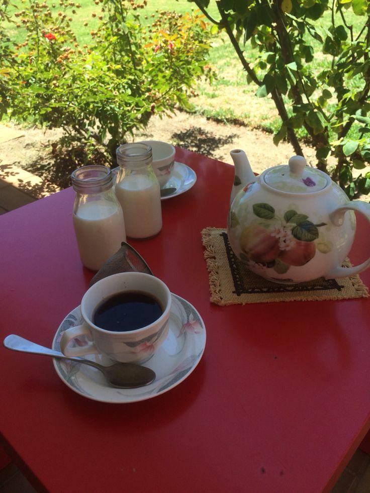 Coffee time! Yahava and local milk :)