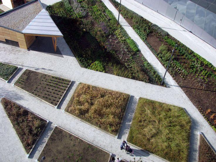 Contemporary Landscape Architecture 78 best paisajismo images on pinterest | landscaping, landscape