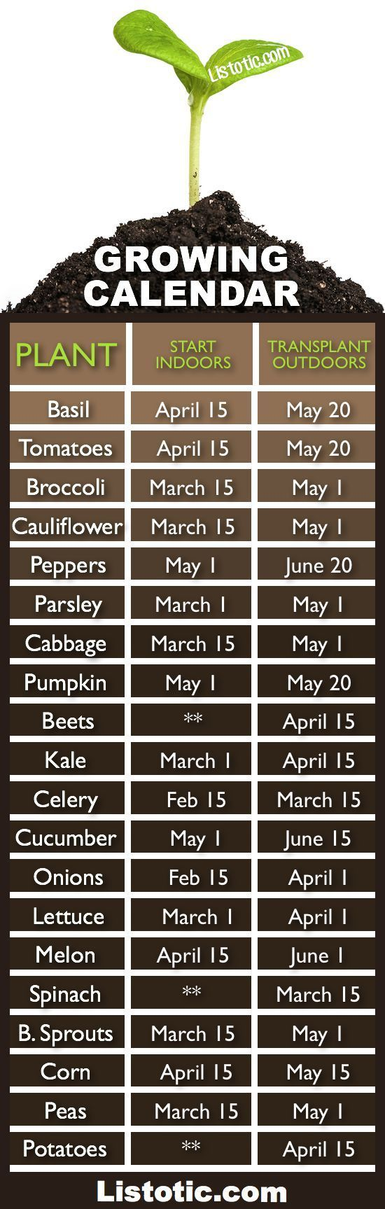 Vegetable garden growing calendar with starting and transplanting dates. If only I had a green thumb, I'll stick to my silk flowers at www.southerncharmwreaths.com/blog