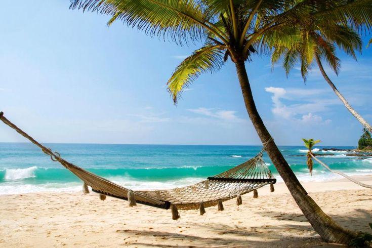Tropisches Paradies unweit von Indien: vielseitiges Sri Lanka