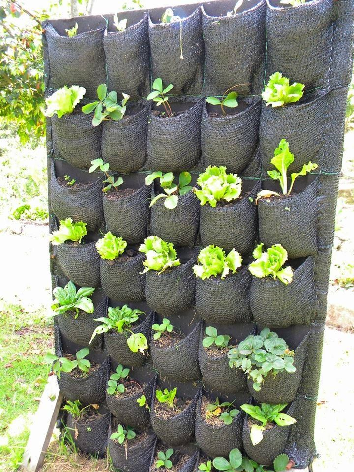 1000 ideas about huertos verticales en pinterest ideas for 1000 ideas para el jardin