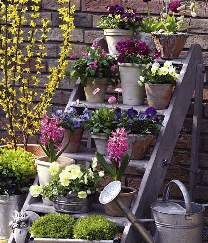 Eine blühende Treppe mit Frühjahrsblumen ist ein ganz besonderer Blickfang.