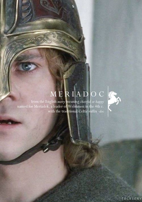 Meriadoc: from the English merry meaning cheerful or happy. Named for Meriadek, a leader of Welshmen in the 4th century. With the traditional Celtic suffix of -doc. #lotr