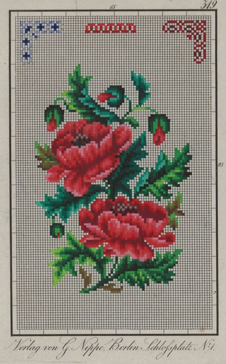 A Floral Berlin WoolWork Pattern Produced By G Nippe Berlin
