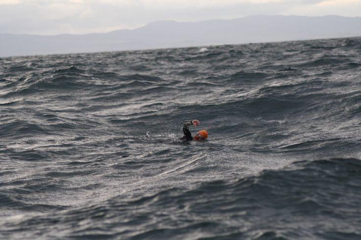 nadando solo en el mar - Buscar con Google