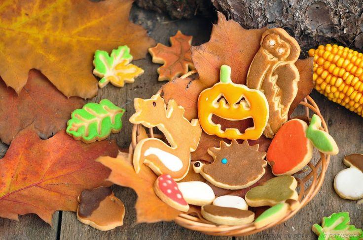 Voyage au pays de la patisserie: Domácí sušenky - Podzim