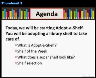 Adopt a shelf in the library to take care of.